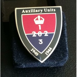 Aux Badge